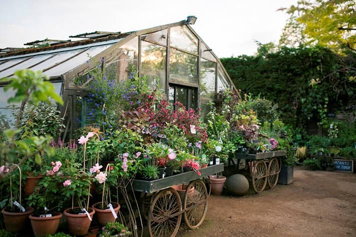 garden-nursery-london-event